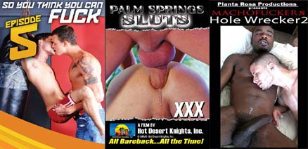 HOLE WRECKER 2 + PALM SPRINGS SLUTS + SO YOU THINK YOU CAN FUCK 5 DVD  -  $4.99  -  DVD ONLY!