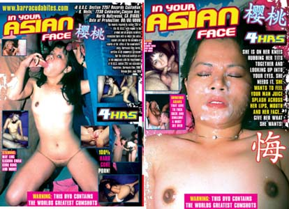IN YOUR ASIAN FACE DVD  -  4 HOURS!  -  $2.69