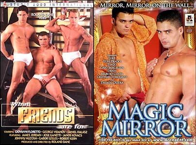 WHAT FRIENDS ARE FOR + MAGIC MIRROR DVD  -  $1.79  -  DVD ONLY!