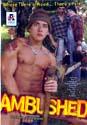 AMBUSHED DVD  -  $4.99  -  GAY ADULT DVDS