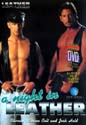 A NIGHT IN LEATHER DVD  -  $4.99