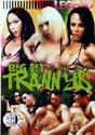 BIG TIT TRANNYS DVD  -  4 HOURS!  -  $3.49