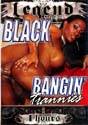 BLACK BANGIN' TRANNIES DVD  -  4 HOURS!  -  $3.49