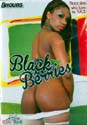 BLACK BERRIES DVD  -  8 HOURS!   -  $2.99