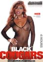 BLACK COUGARS DVD  -  4 HOURS!  -  $2.89