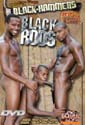 BLACK RODS DVD  -  BLACK BRAZILIAN BOYS  -  $3.59