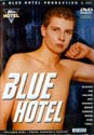 BLUE HOTEL DVD  -  EURO TWINKS  -  $14.99  -  GAY USED DVD!