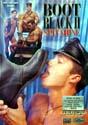 BOOT BLACK II: SPIT SHINE DVD  -  BY CHI CHI LARUE  -  $4.49