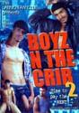 BOYZ N THE CRIB 2 DVD  -  $9.99  -  GAY USED DVD!