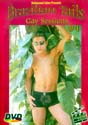 BRAZILIAN TAILS GAY SESSIONS 4 DVD  -  $8.49  -  GAY USED DVD!