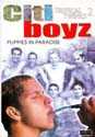 TROPICAL TWINKS 2: PUPPIES IN PARADISE DVD  -  $16.99  -  GAY USED DVD!