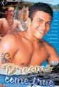 DREAMS COME TRUE DVD  -  BRAZILIAN BOYS  -  $3.59