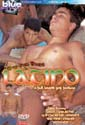LATINO DVD  -  BRAZILIAN BOYS  -  $3.59