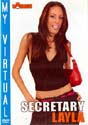 MY VIRTUAL SECRETARY LAYLA DVD  -  $9.99