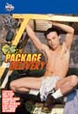 PACKAGE DELIVERY DVD  -  $3.59