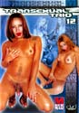 TRANSEXUAL TRIO 12 DVD  -  $3.49