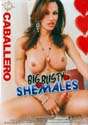 BIG BUSTY SHEMALES DVD  -  $3.49